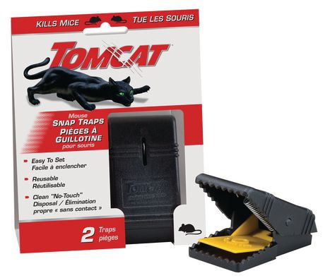 product_branchTomcat