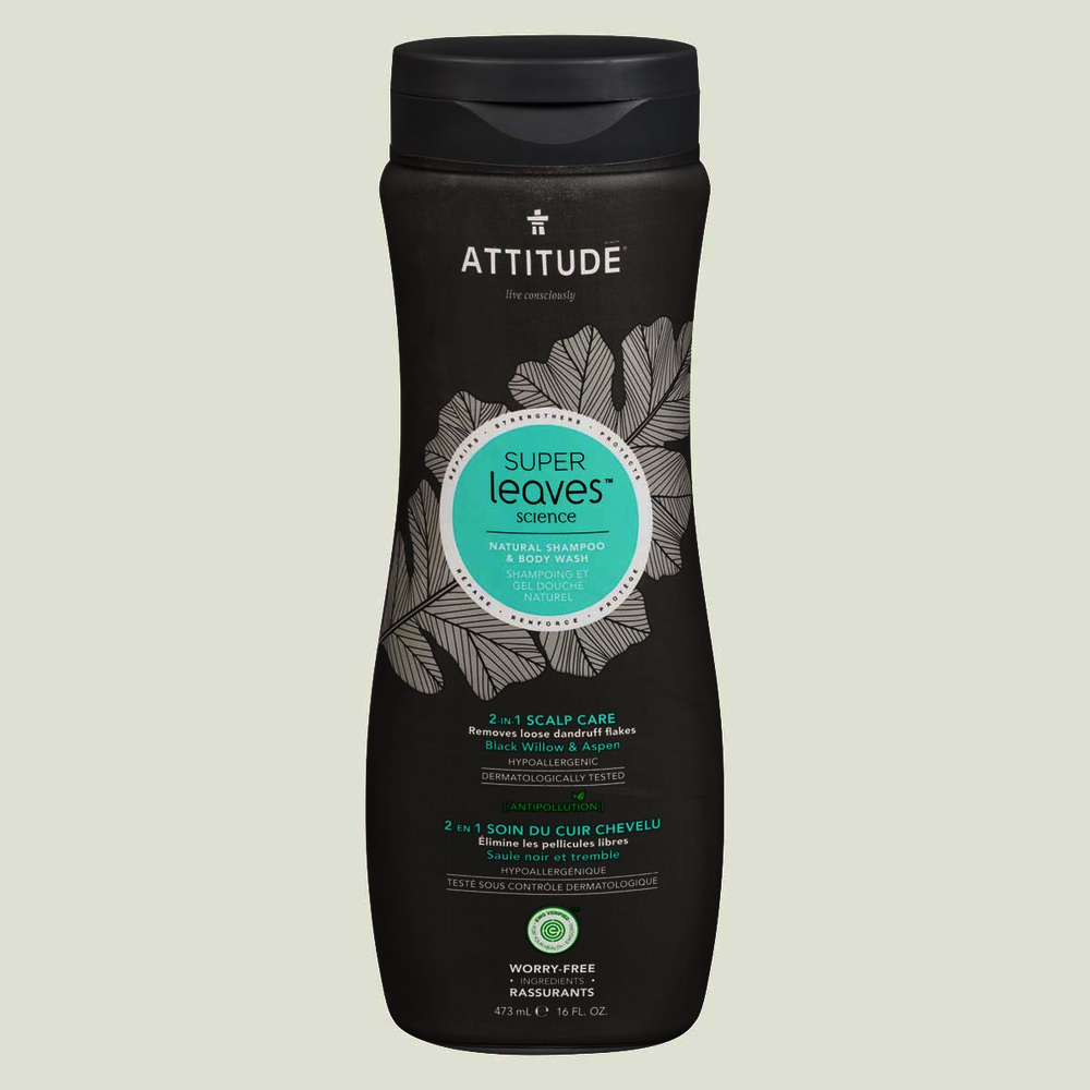 Attitude Men 2-IN-1 Shampoo & Body Wash Scalp Care