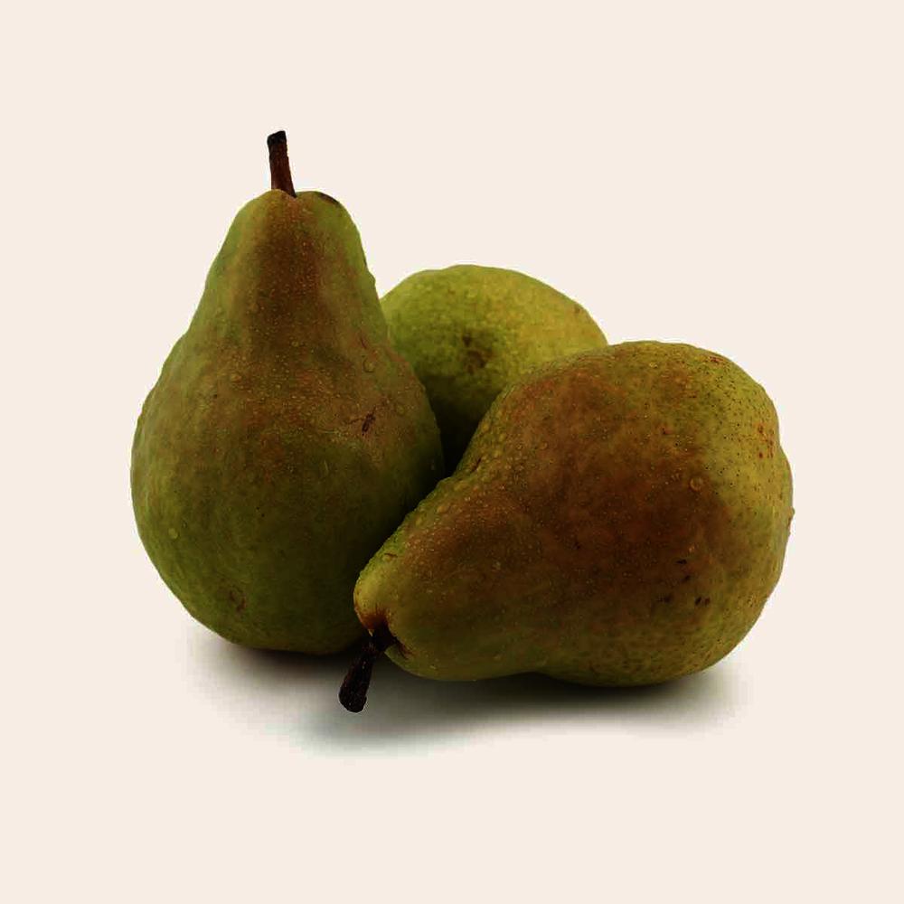 Fancy Bartlett Pear