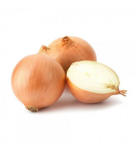 Cebolla blanca Unidad