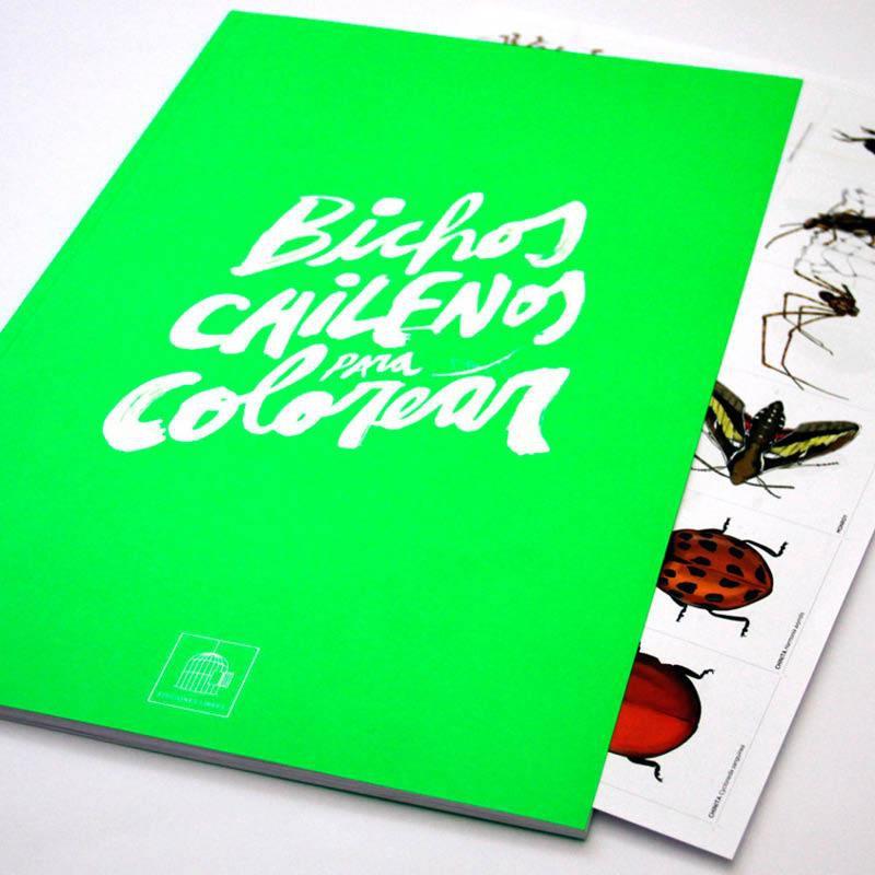 Bichos chilenos para colorear Libro 28 x 43 cm