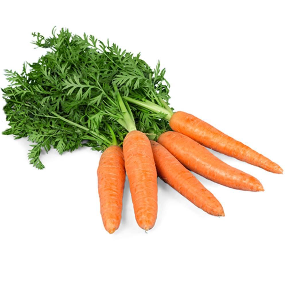 Zanahoria Precio por kg, unidad: 100 g aprox