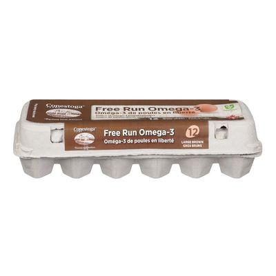 Large brown free run omega-3 eggs