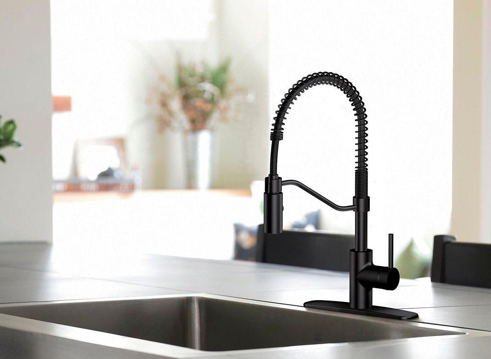 Danze Jasper 1 Handle Pull Down Kitchen Faucet Danze Matte Black Delivery Cornershop Canada