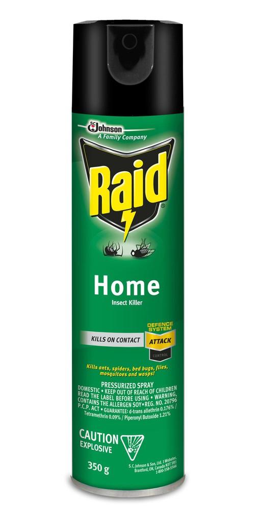 Raid Home Insect Killer 350-g