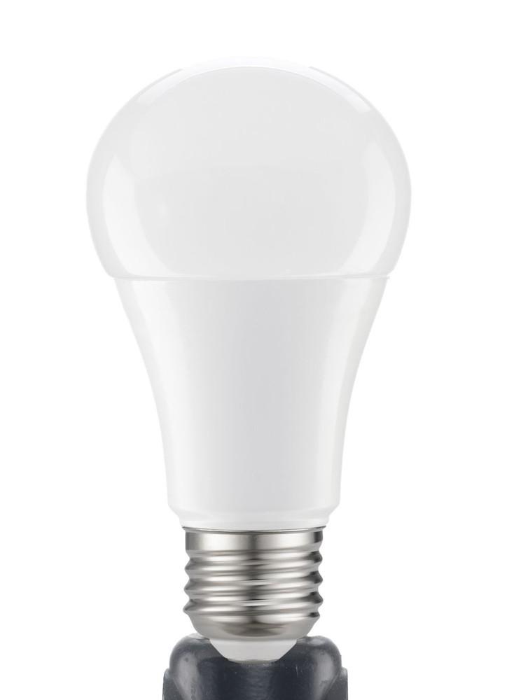 Daylight Led Bulbs: NOMA LED A19 60W Daylight Light Bulbs At Home