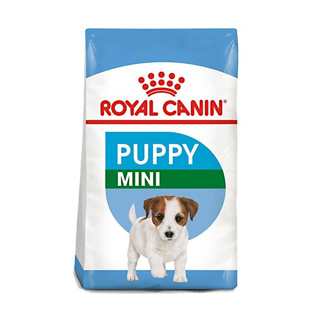 Alimento perro mini junior