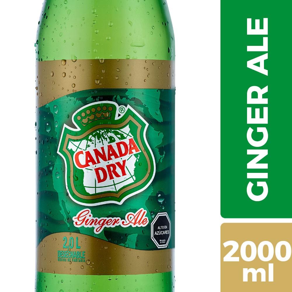Bebida ginger ale Botella 2 l