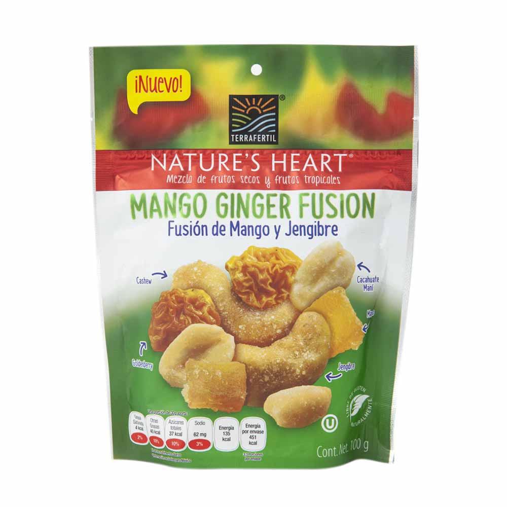 Snack mango ginger fusion