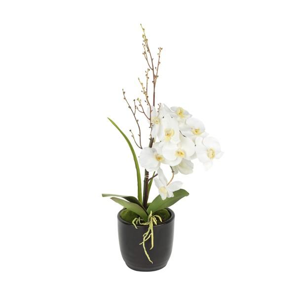 Orquidea blanca 70 cms de alto x 38 cms de ancho