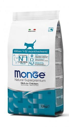 Kitten 1.5 kg