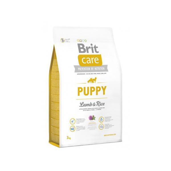 Puppy cordero y arroz