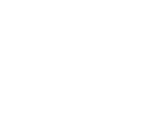 Logo Menezes