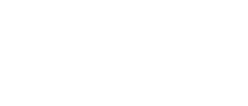 Logo Bien argento