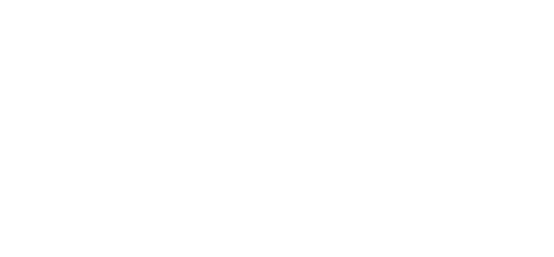 Logo Alkaline Electrics