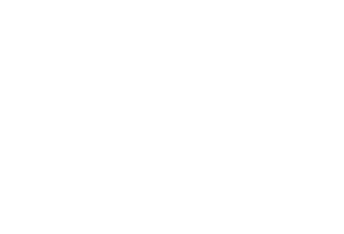 Logo The Fish and Bone
