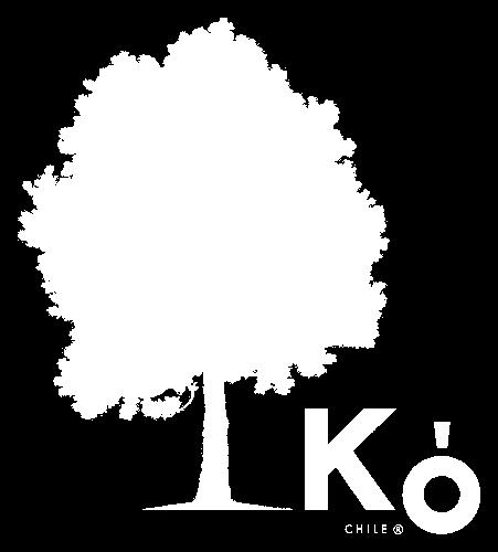 Logo Kó Chile