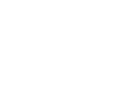 Logo Lápiz López