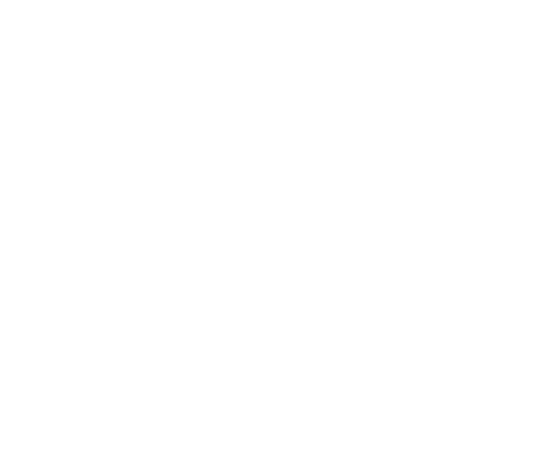 Logo Village Pets and Supplies