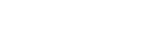 Logo Traveling Tikes