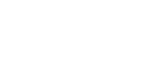 Logo Bravo Supermarkets Weston