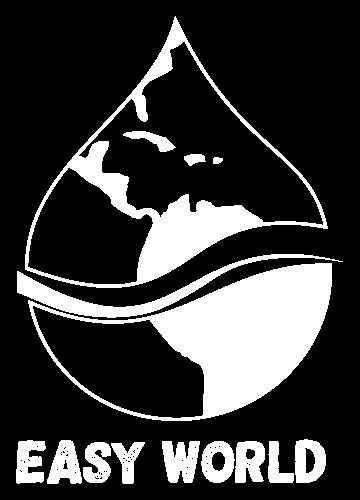 Logo Easy world