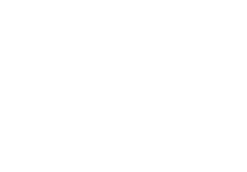 Logo Wency's