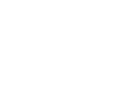 Logo Bagel Cove