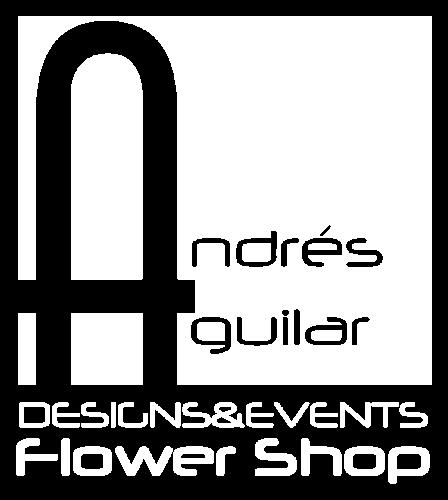 Logo Andres Aguilar Designs