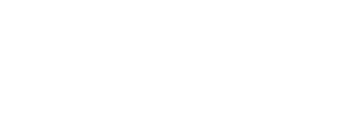 Logo Morton Williams Wine & Spirits