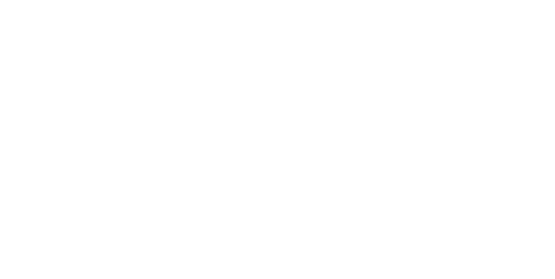 Logo Mary Arnold Toys