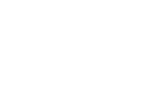 Logo Floreria San Borja
