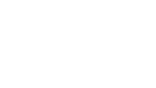Logo Colombian preserved flowers