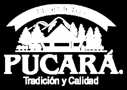 Logo Pucará