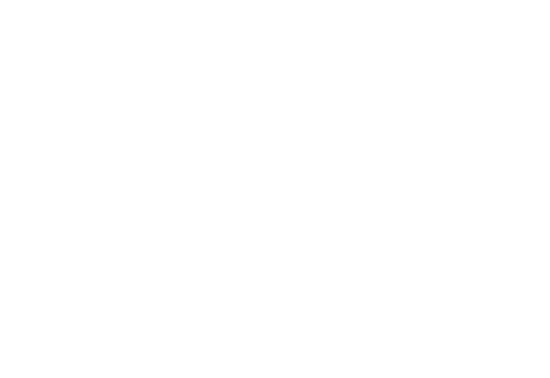 Logo Lace and Leaves Studio