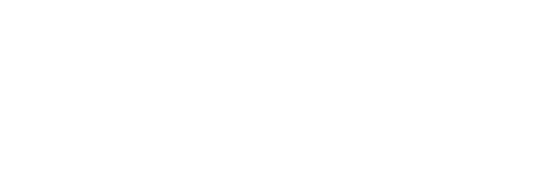 Logo Bloomingdays Flower Shop