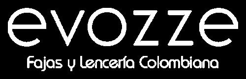 Logo Evozze