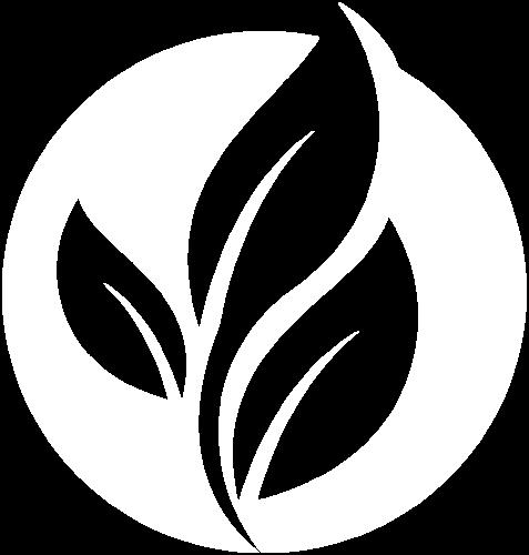 Logo Spaciofit